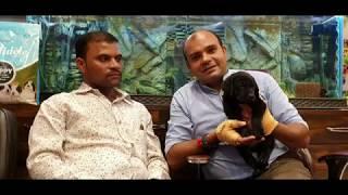 Black Labrador Happy Clients From Maharashtra | Baadal Bhandaari Pathankot 9878474748