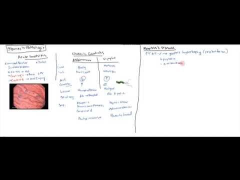 Video Stomach Diseases(Gastritis, Peptic Ulcer, Zollinger Ellison, Menetrier's, Adenocarcinoma)