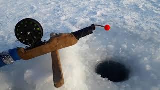 Алаколь озеро рыбалка казахстан о рыбалке