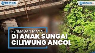 Sedang Bersih-bersih, Petugas UPK Badan Air Temukan Mayat Wanita di Anak Kali Ciliwung Wilayah Ancol