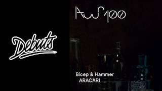 """Bicep & Hammer """"ARACARI""""   Boiler Room Debuts"""