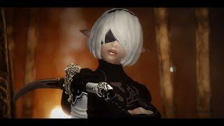 Skyrim Mods: dint Nier Automata 2b Cosplay by Akemi Snow Elf Follower