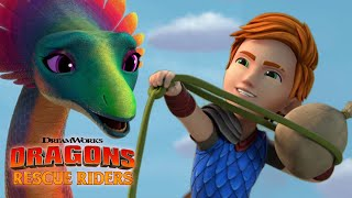 Sneeze Powder | DRAGONS RESCUE RIDERS | NETFLIX