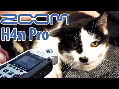 Das Zoom H4n Pro im Test – BESSER als das Original? [Review - Deutsch]