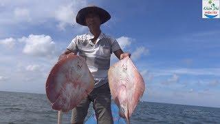 Về Miệt Thứ Thăm Câu Kiều Cùng Sư Phụ  Fishing