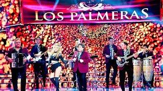 """Los Palmeras cantaron """"Bombón asesino"""" y se armó la fiesta en la pista de Showmatch"""