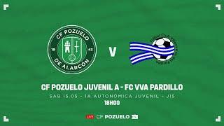 R.F.F.M. - PRIMERA DIVISIÓN AUTONÓMICA JUVENIL (Grupo 1) - Jornada 15: C.F. Pozuelo de Alarcón 1-0 F.C. Villanueva del Paridllo