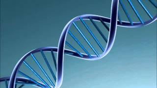 Backseat Freestyle (DNA Remix) rap