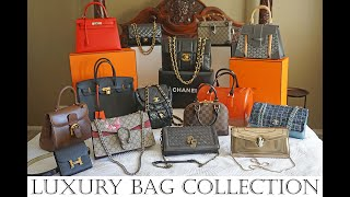 BEST To WORST Designer Luxury Handbag Collection Review With Modshots - Hermes, Chanel, Delvaux Etc