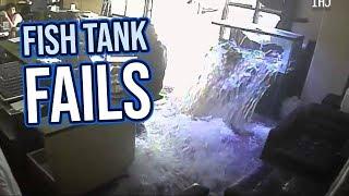 Fish Tank Fails 2018 | Funny Fail Compilation