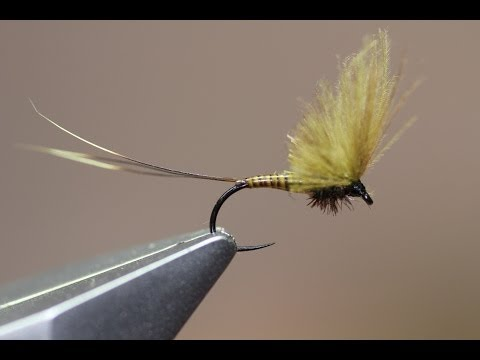 Fly tying video: BWO Upright CDC wing (SMHAEN style)