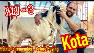 Best Goat farm with 5 star Palai | Inside view | Bakra Farm
