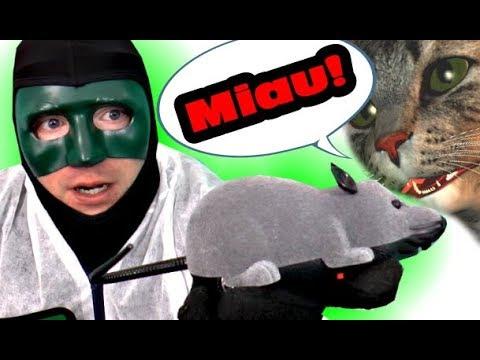 Katzen werden diese RC Maus lieben! [Amazon] Los schnell den Käse verstecken! |Review