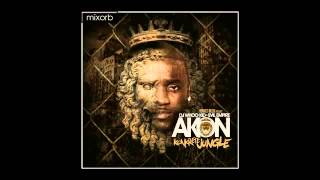 Akon - Salute 100 Ya'll ft. Money J _ Fabolous
