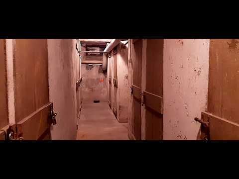 Download Halloween Ii 2020 Mp4 HD Video and MP3