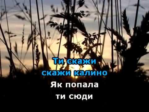 ПРИ ДОЛИНІ КУЩ КАЛИНИ КАРАОКЕ гурт ЕКСПРЕС