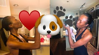 I GOT A CAVALIER KING CHARLES SPANIEL PUPPY! | FIRST DAY WITH MY NEW PUPPY | GOTCHA DAY |