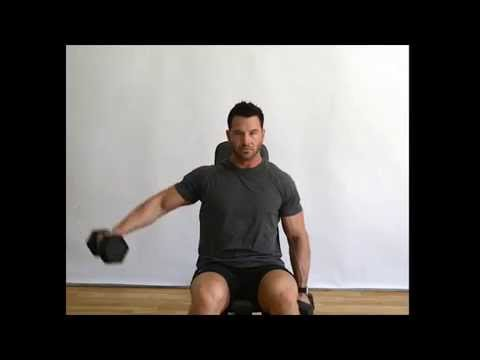 Shoulder Alternating Lateral Raise (Dumbbells) - Seated