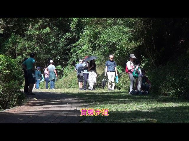 <html> <body> Film for Purple Butterfly2019-11-10 </body> </html>