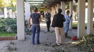 preview picture of video 'Protezione Civile di Frattamaggiore in azione nella Villa Comunale - Parte seconda'