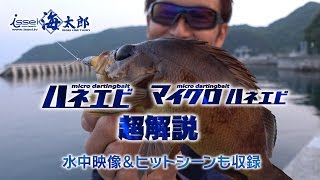 村上晴彦が海太郎-ハネエビ攻めを実釣解説-水中映像&ヒットシーン多数アリ