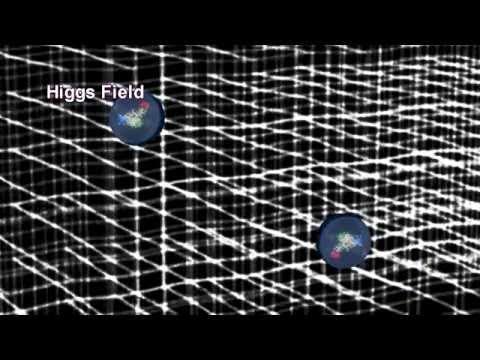 Hány napig pinwormok tojnak