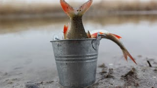 Отчеты о рыбалке в енотаевке январь 2020г