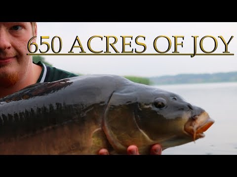 Carp Fishing - 650 Acres Of Joy