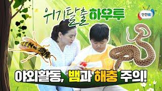 [생활안전] 야외활동 시 꼭 주의해야 할 뱀, 벌, 야생진드기ㅣ위기탈출 하우투