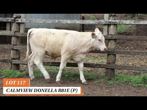 CALMVIEW DONELLA R81E (P)