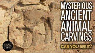 Mysterious Ancient Animal Carvings in the Saudi Arabian Desert | Ancient Architects
