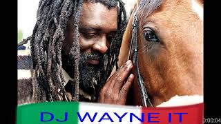 Best of Lucky Dube Mix