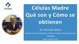 CELULAS MADRE  - Qúé son y cómo se obtienen - ITRAMED - Instituto de Traumatología y Medicina Regenerativa Avanzada