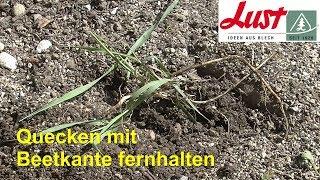 Quecke, Unkraut 🌿 Mit Rasenkante Von Beet Fernhalten 🌿 Beeteinfassung