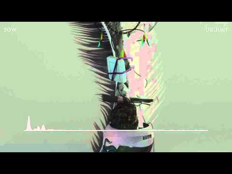 Sow (Song) by Baauer