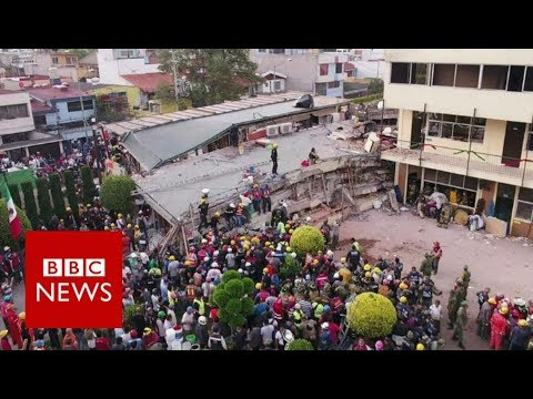 Mexico earthquake: Race to find survivors under collapsed school – BBC News