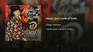 Hasta Que Cante El Gallo Diego Herrera #dj27 #estreno #banda
