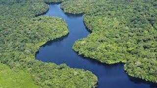 La cuenca (bassin) del Amazonas