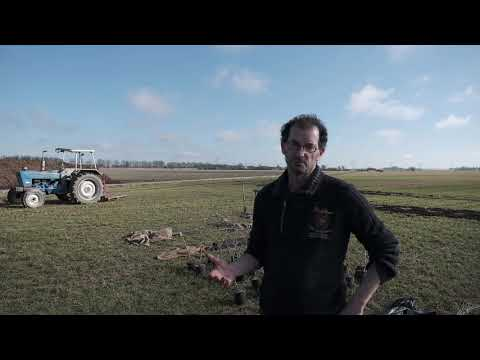 Agrarische voedselbossen | Agrifirm