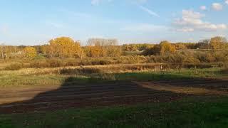 Осень,природа,красота!