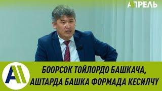 Лекцион: Октябрь Капалбаев кыргыз каада-салтынын кызыктуу фактылары жөнүндө \\ Апрель ТВ