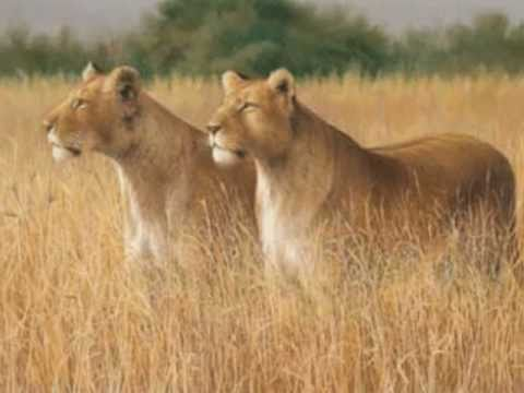 Otep- We Dream Like Lions (Lyrics included)