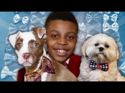 How Bowties Help These Pets Find Forever Homes