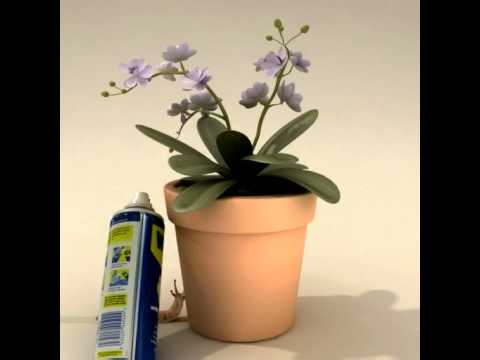 WD-40® Multi-Use Product Helps Keep Pests Away
