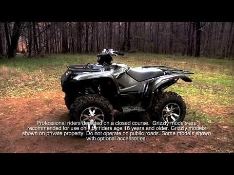 2017 Yamaha Grizzly EPS LE in Sandpoint, Idaho