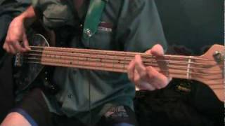 Don't Tread On Me - 311 (bass cover)