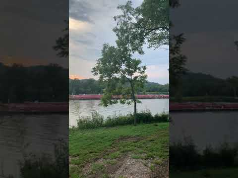 Video Of Whooping Crane Farm, TN