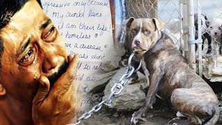 Man Left In Tears After Discovering The Note Tucked Behind Abandoned Dog Weighed Down By Heavy Chain