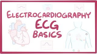 Electrocardiography (ECG/EKG) - basics - Download this Video in MP3, M4A, WEBM, MP4, 3GP