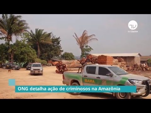 Human Rights Watch  apresenta relatório sobre violência na Amazônia - 18/09/19